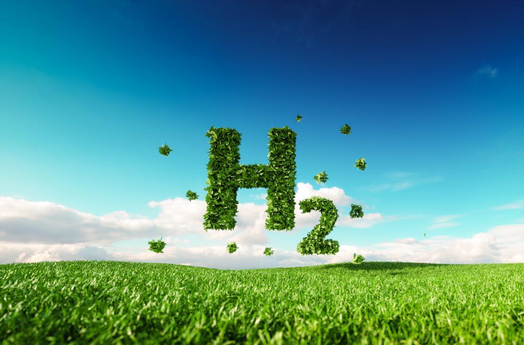 Green Hydrogen the WoodRoll® way